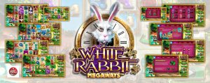 gokkast white rabbit